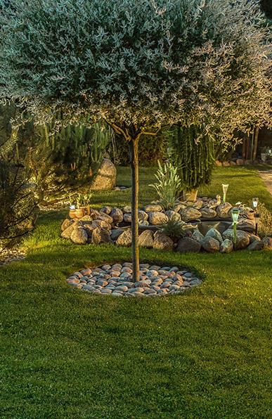 Le Temps d\'un Jardin, paysagiste Vannes, élagueur Vannes